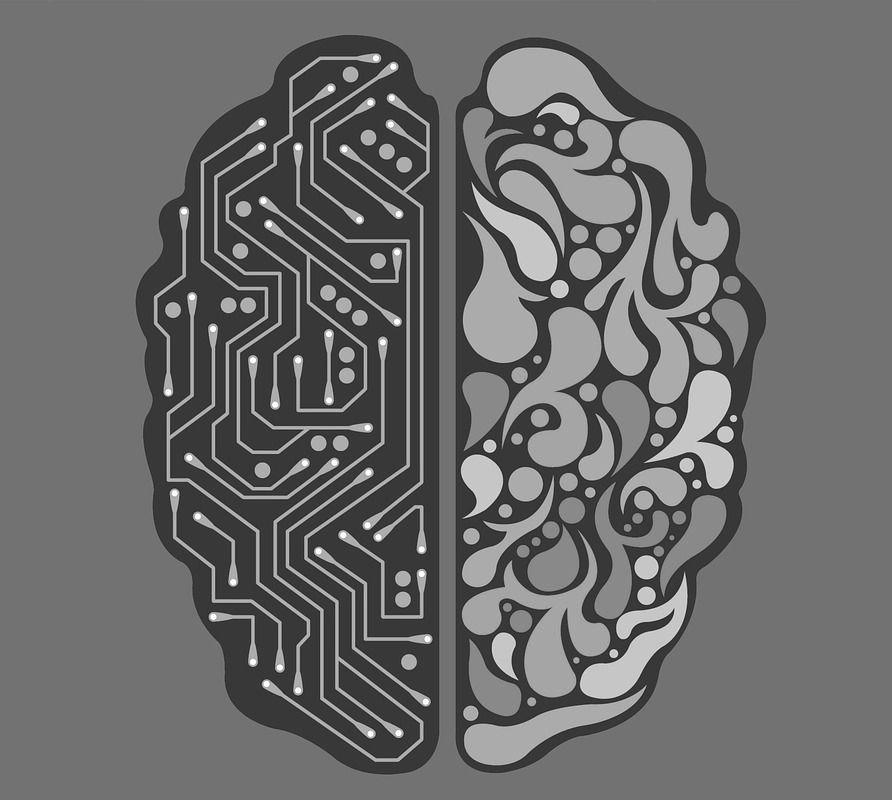 PNL mode d'emploi cerveau